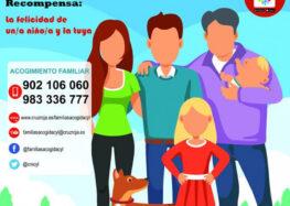 Se buscan familias de acogida, ahora más que nunca (21 mayo 2020)